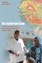 Cover of The Enculturated Gene: Sickle Cell Health Politics and Biological Difference in West Africa